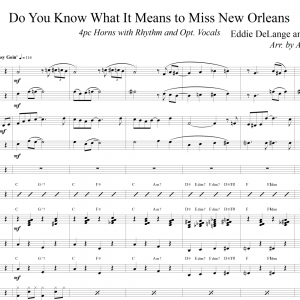 Do You Know What It Means to Miss New Orleans - Trad. Jazz Band